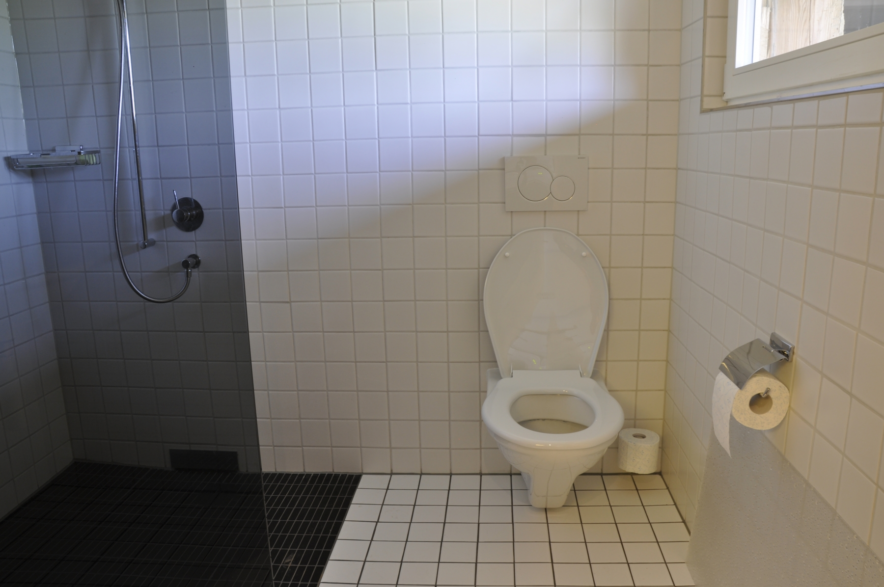 Toilette-dusche